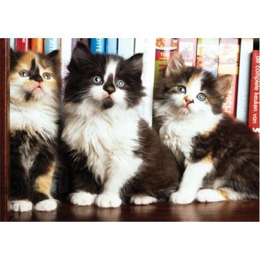 Puzz Kütüphanedeki Kediler 1000 Parça Puzzle